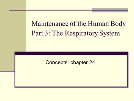 Maintenance of the Human Body Part 3: The Respiratory System Concepts: chapter 24.