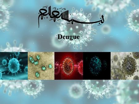 Dengue. Dengue cycle Aedes mosquitoes which reside in water-filled containers.