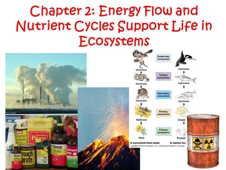 Chapter 2: Energy Flow and Nutrient Cycles Support Life in Ecosystems.