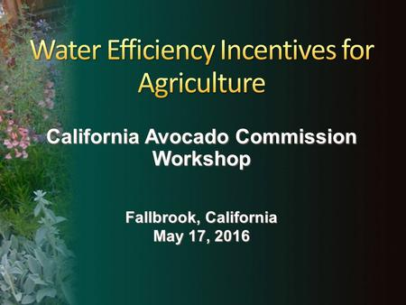 California Avocado Commission Workshop Fallbrook, California May 17, 2016.