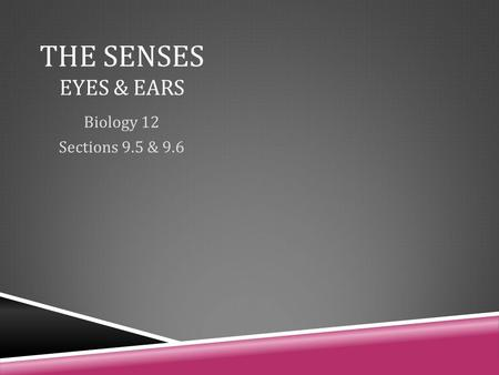 THE SENSES EYES & EARS Biology 12 Sections 9.5 & 9.6.