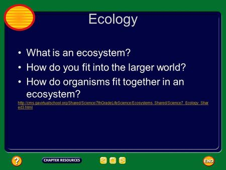 Ecology What is an ecosystem? How do you fit into the larger world? How do organisms fit together in an ecosystem?