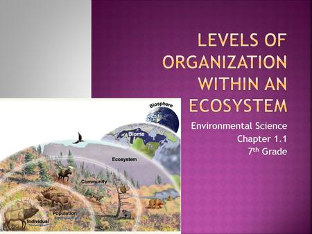 Environmental Science Chapter 1.1 7 th Grade.  Ecology: Study of the interactions of organisms with one another and with their environment.  Two Groups: