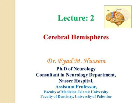 Lecture: 2 Cerebral Hemispheres Dr. Eyad M. Hussein Ph.D of Neurology Consultant in Neurology Department, Nasser Hospital, Assistant Professor, Faculty.