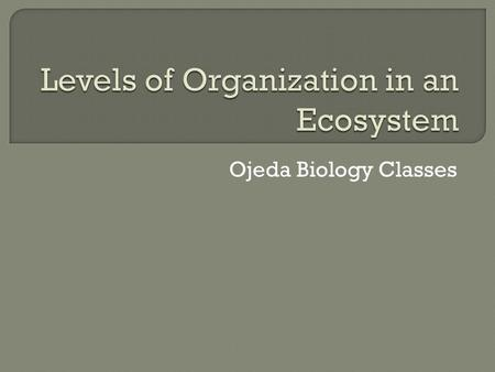 Ojeda Biology Classes.  A structural unit of all living things. The smallest unit classified as an living organism.
