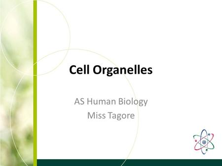Cell Organelles AS Human Biology Miss Tagore. Learning Outcomes To understand the structure and function of cell organelles To be able to recognise cell.