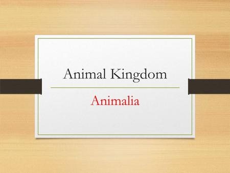 Animal Kingdom Animalia. Animals Multicellular Heterotrophs Most have muscles and nervous tissue for movement Keep internal body conditions the same (homeostasis)