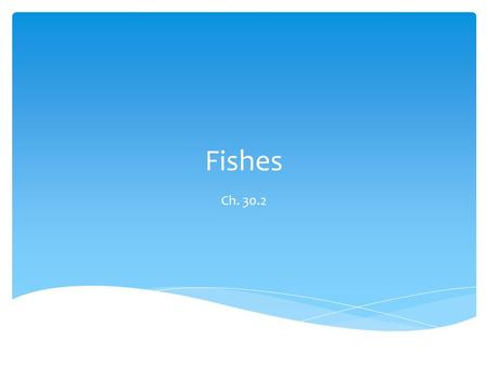 Fishes Ch. 30.2.  More than 2/3 of the Earth's surface is water  No matter where there is water, there is some sort of fish living in the water.