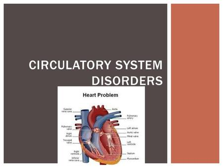 CIRCULATORY SYSTEM DISORDERS. 1.To understand the cause, process, signs, symptoms and treatments of a variety of circulatory system disorders. These disorders.