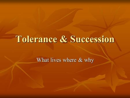 Tolerance & Succession What lives where & why. Limiting Factors factors that restrict the numbers or distribution of organisms factors that restrict the.