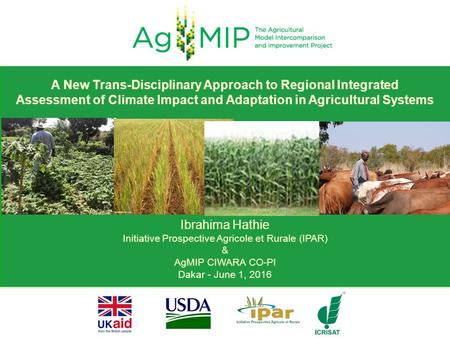 Ibrahima Hathie Initiative Prospective Agricole et Rurale (IPAR) & AgMIP CIWARA CO-PI Dakar - June 1, 2016 A New Trans-Disciplinary Approach to Regional.