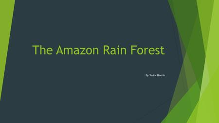 The Amazon Rain Forest By Tudor Morris. Where is the Amazon rain forest?  Over half of the Amazon rainforest is located in Brazil but it is also located.