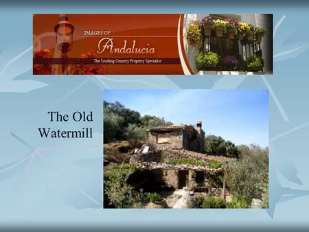 The Old Watermill. An old water mill in a truly idyllic position in a beautiful wooded valley with a traditional two storey house in need of modernizing.