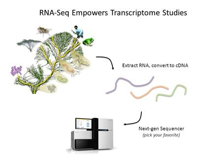 Extract RNA, convert to cDNA RNA-Seq Empowers Transcriptome Studies Next-gen Sequencer (pick your favorite)