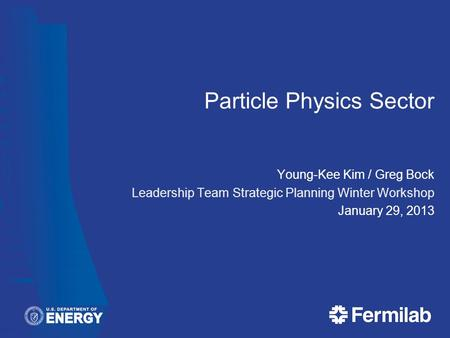 Particle Physics Sector Young-Kee Kim / Greg Bock Leadership Team Strategic Planning Winter Workshop January 29, 2013.