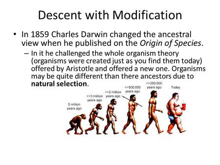Descent with Modification In 1859 Charles Darwin changed the ancestral view when he published on the Origin of Species. – In it he challenged the whole.