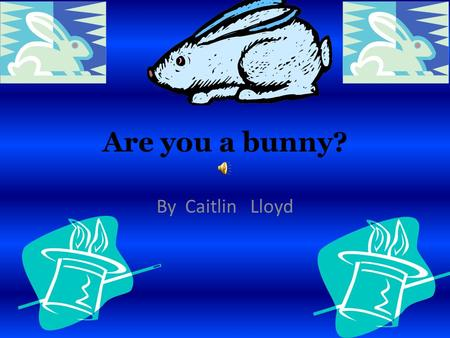 Are you a bunny? By Caitlin Lloyd Appearance If you are a rabbit you would be black, brown, white, or a mixture. You are 24 inches and weigh 12 pounds.