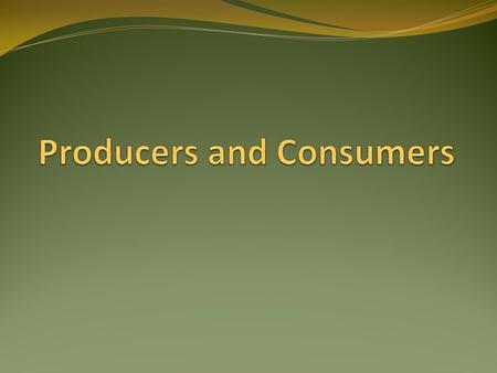 Producers ALL producers are plants Grass Trees Flowers Plankton.