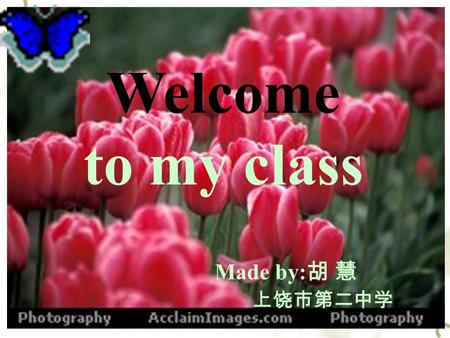 Welcome to my class Made by: 胡 慧 上饶市第二中学 Unit 21 BODY LANGUAGE.