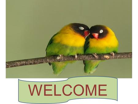 WELCOME. Greetings Good morning students How are you?