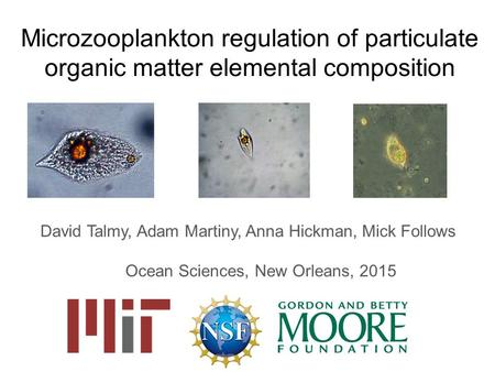 Microzooplankton regulation of particulate organic matter elemental composition David Talmy, Adam Martiny, Anna Hickman, Mick Follows Ocean Sciences, New.