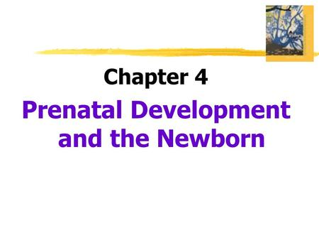 Chapter 4 Prenatal Development and the Newborn.  Developmental Psychology  a branch of psychology that studies physical, cognitive and social change.