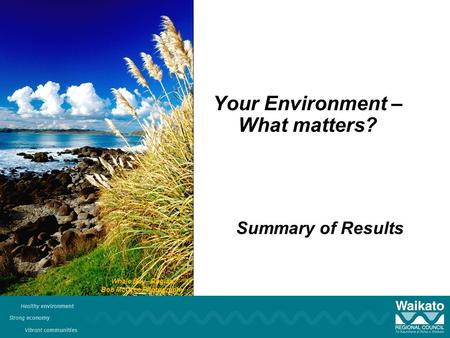 Your Environment – What matters? Summary of Results Whale Bay - Raglan Bob McCree Photography.