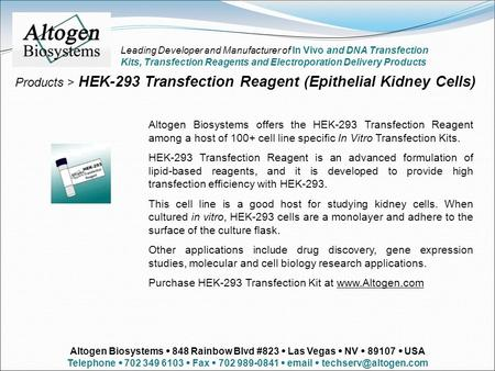 Products > HEK-293 Transfection Reagent (Epithelial Kidney Cells) Altogen Biosystems offers the HEK-293 Transfection Reagent among a host of 100+ cell.