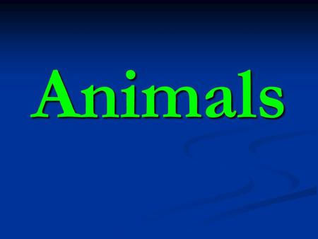 Animals. Characteristics of Animals Multicellular eukaryotes Multicellular eukaryotes Ability to move to reproduce, obtain food, protection Ability to.