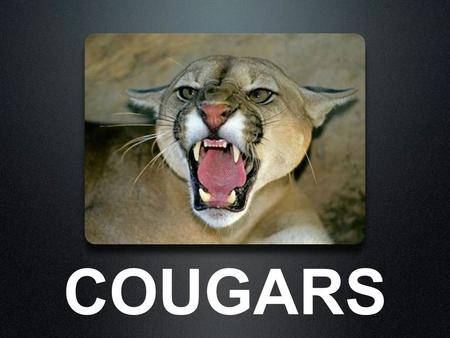 COUGARS. HABITAT Cougars live in north, central, and south america. They prefer to live in mountains and forests.