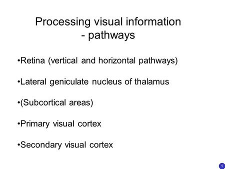 Processing visual information - pathways Retina (vertical and horizontal pathways) Lateral geniculate nucleus of thalamus (Subcortical areas) Primary visual.