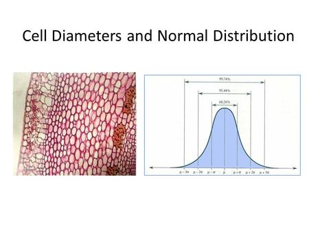 Cell Diameters and Normal Distribution. Frequency Distributions a frequency distribution is an arrangement of the values that one or more variables take.