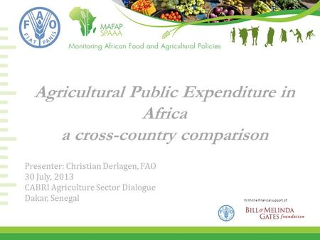 With the financial support of Agricultural Public Expenditure in Africa a cross-country comparison Presenter: Christian Derlagen, FAO 30 July, 2013 CABRI.