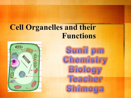 Cell Organelles and their Functions. Two Types of Cells.
