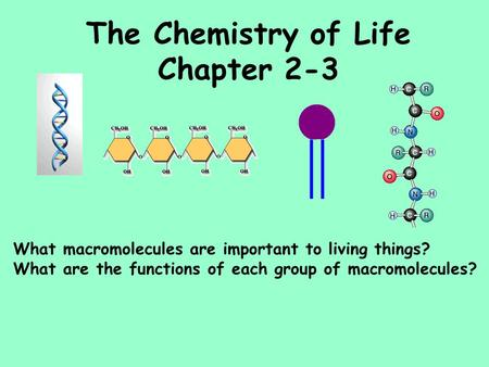The Chemistry of Life Chapter 2-3 What macromolecules are important to living things? What are the functions of each group of macromolecules?