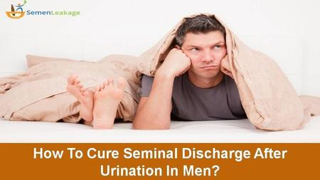 How To Cure Seminal Discharge? Lots of men worldwide are suffering from semen leakage after urination. If it is not cured in time, you will suffer from.