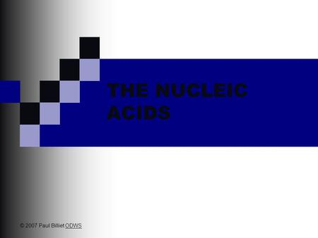 THE NUCLEIC ACIDS © 2007 Paul Billiet ODWSODWS Friedrich Miescher in 1869 isolated what he called nuclein from the nuclei of pus cells Nuclein was shown.
