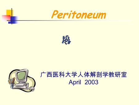 Peritoneum 广西医科大学人体解剖学教研室 April 2003. peritoneum The peritoneum is a large continous sheet of serous membrane in the body, and consists of a closed sac,