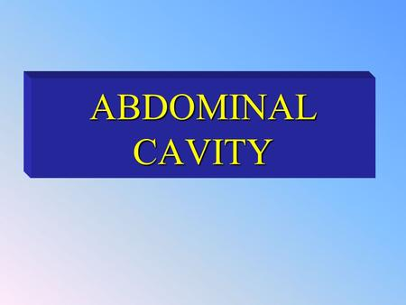 ABDOMINAL CAVITY. The abdominal cavity is a large cavity so it is subdivided descriptively into 9 regions.The abdominal cavity is a large cavity so it.