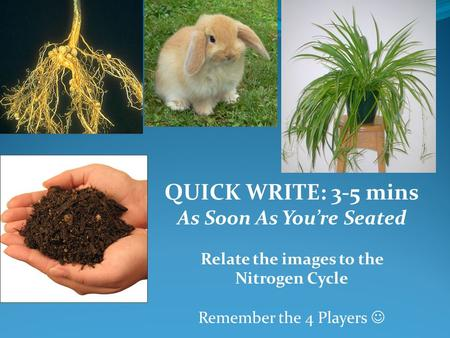 QUICK WRITE: 3-5 mins As Soon As You're Seated Relate the images to the Nitrogen Cycle Remember the 4 Players.