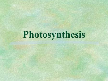 Photosynthesis. A. Introduction 1. Location: chloroplasts (in plants and algae) or folds in cell membrane (in photosynthetic prokaryotes, cyanobacteria)
