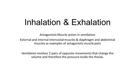 Inhalation & Exhalation
