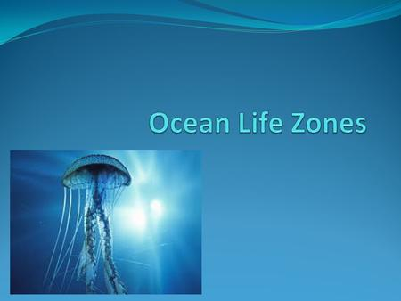 Ocean life is determined by many factors: A: Sunlight – Producers require sunlight for photosynthesis.