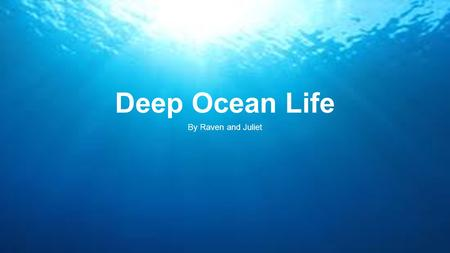  Deep Ocean Life By Raven and Juliet. Table of Contents  Vocabulary Words………………………………………………3-8  Animals………………………………………………………9-13.