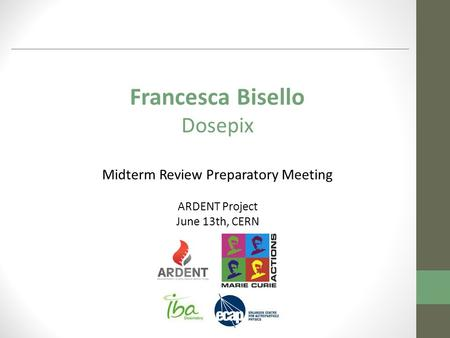 Francesca Bisello Dosepix Midterm Review Preparatory Meeting ARDENT Project June 13th, CERN.