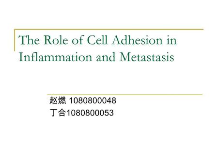 The Role of Cell Adhesion in Inflammation and Metastasis 赵燃 1080800048 丁合 1080800053.