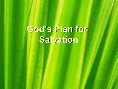God's Plan for Salvation. We All have sinned The Bible says in Romans 3:10-18: As it is written, There is none righteous, no, not one: There is none that.
