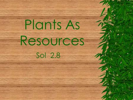 Plants As Resources Sol 2.8 Plants Are Useful Plants Give Us Medicines  Over ½ of medicines are used from plant parts.  Medicines are used to help.