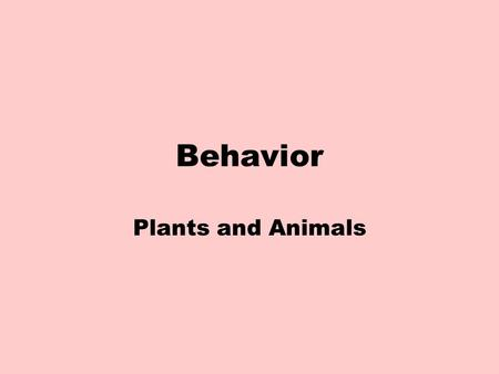 Behavior Plants and Animals. What is behavior? Anything an animal does in response to a stimulus in the environment. Behavior can be inherited or innate.