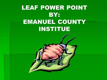 LEAF POWER POINT BY: EMANUEL COUNTY INSTITUE. AMERICAN ELM Ulmus americana.